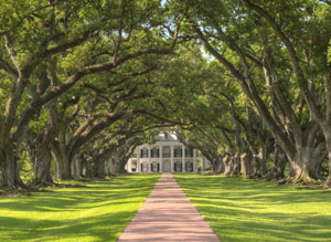 plantations-private-driver-new-orleans